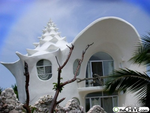 Unusual houses all about houses living life to the fullest for Unusual houses for sale in us