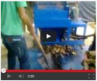 Video Proses Pembelahan Pinang Segar