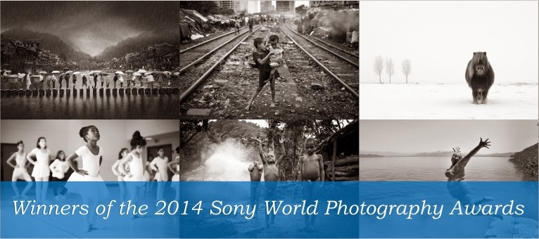 Sony World Photography Awards Winners