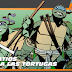 Teenage Mutant Ninja Turtles #15[IDW]