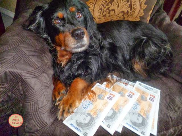 Molly The Wally Has Loads Of Money!