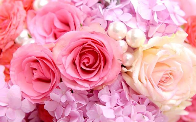 Flores de Colores Imágenes de Flores para San Valentin