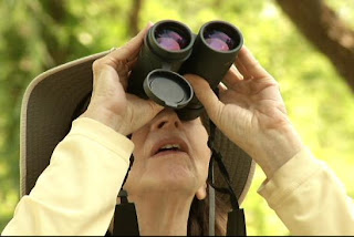 73-year-old birdwatcher: I was raped in New York's Central Park