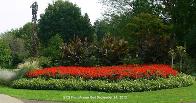 Canna lilies form backdrop at annual bed in BRG.