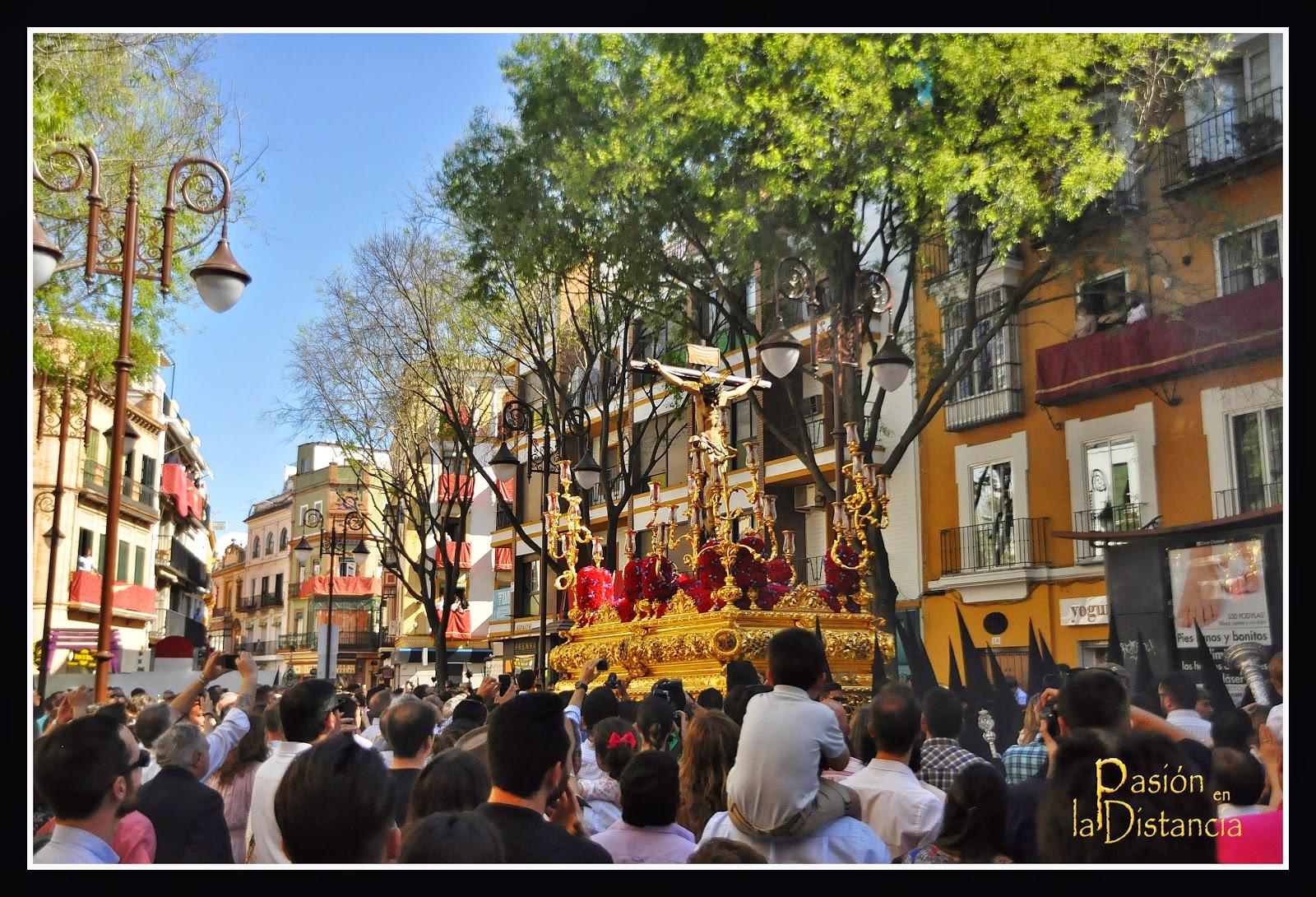 Hermandad-San-Bernardo-en-Alfalfa-2015