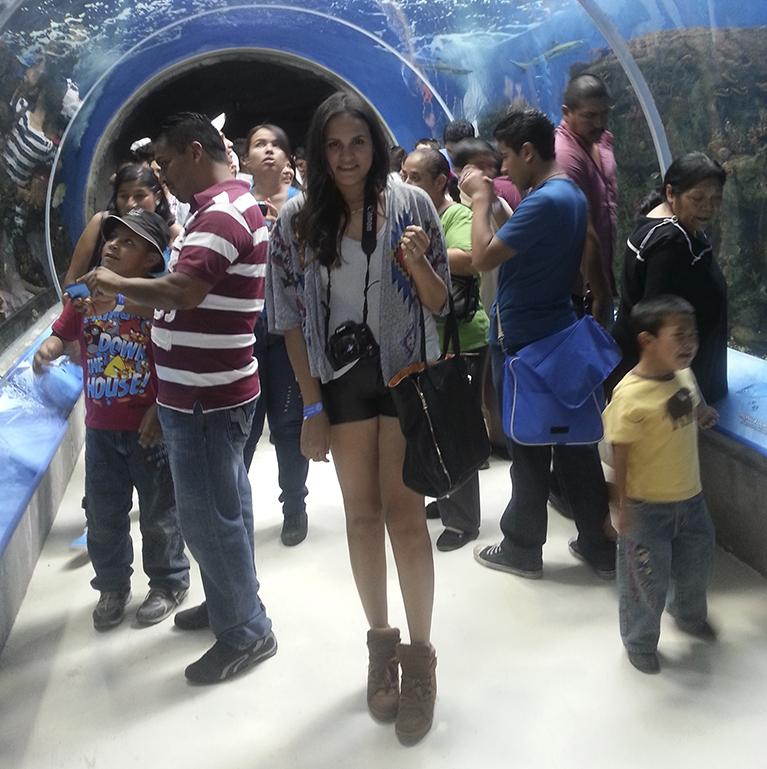 acuario zoologico guadalajara