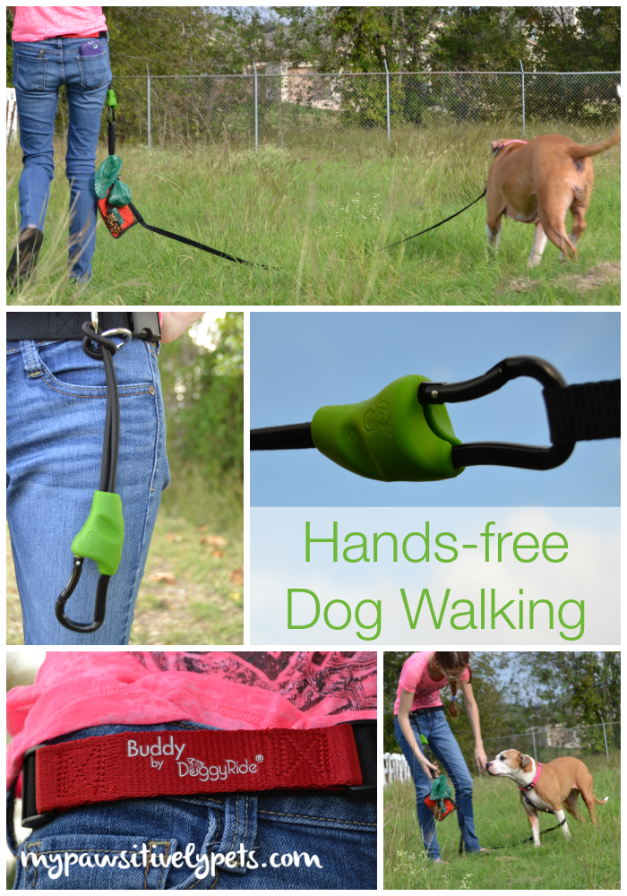 Buddy Hands Free Dog Leash Connector