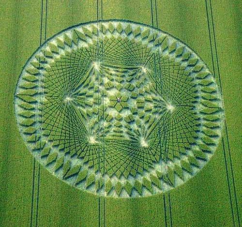 crop circle dengan pola unik dan tingkat kesulitan terbesar-1