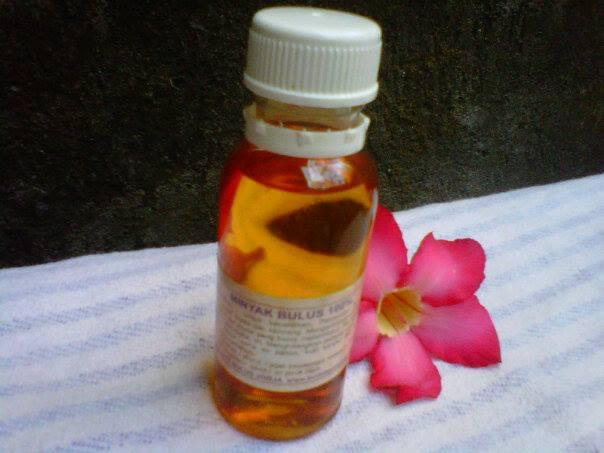 obat herbal memperbesar payudara dengan cepat