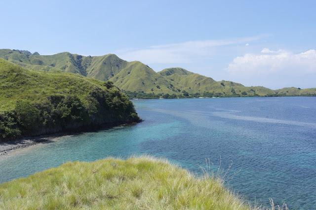 ทริปล่าโคโมโด (ด้วยกล้องถ่ายรูป) หาดสีชมพูเกาะโคโมโด