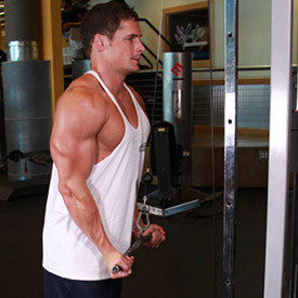 How to Build Muscle Fast: Best Exercises to Build Triceps
