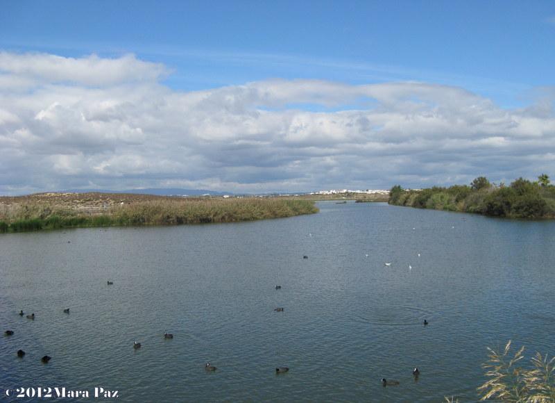 Lagoa dos Salgados, Algarve