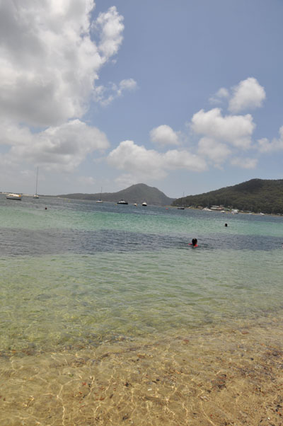 shoal bay best beach for kids in port stephens