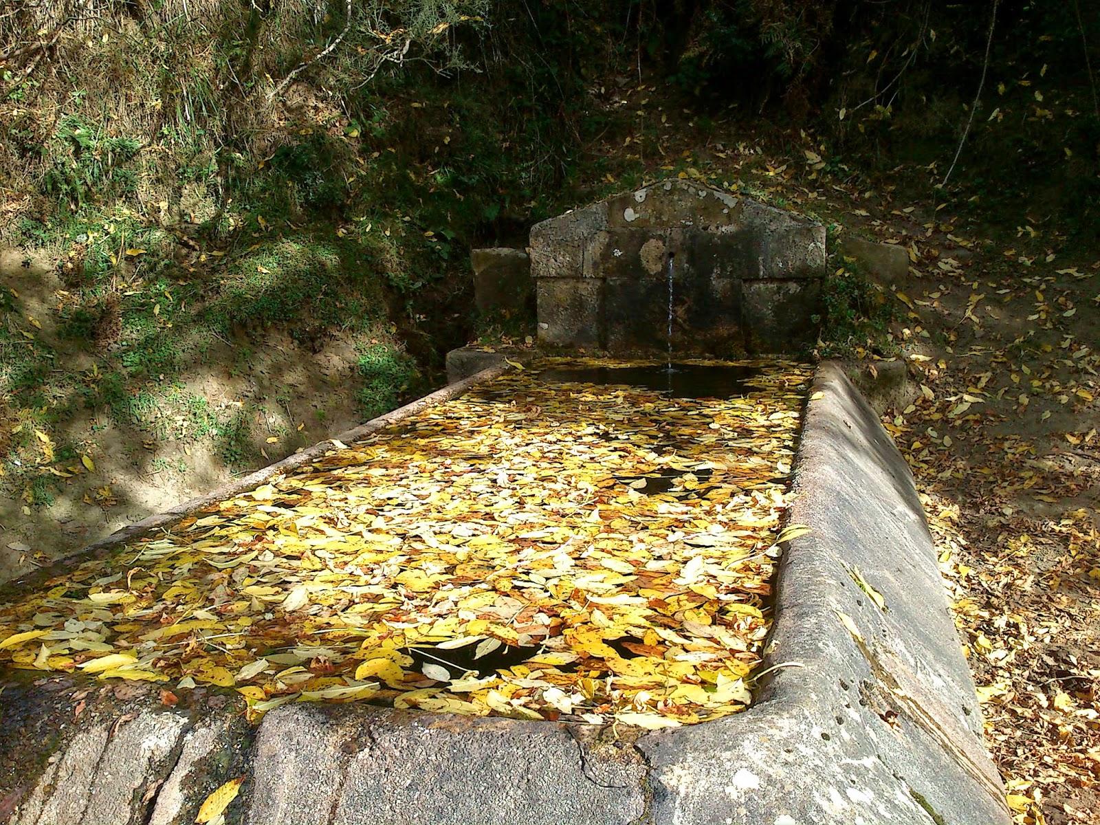 Fuente Piedrafita.