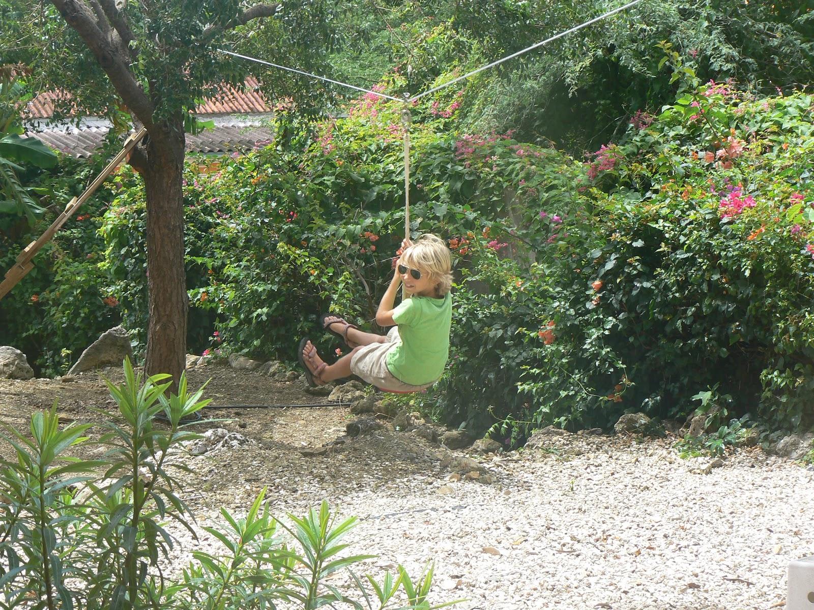 onze eigen tuin opzeggen starreveld in curacao nieuw abseilen in de achtertuin