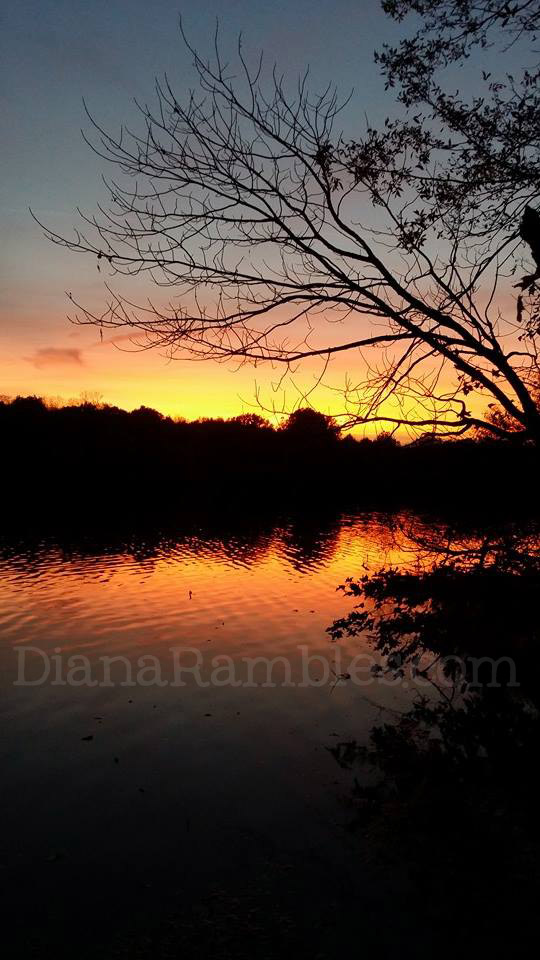 illinois campground fall colors sunset