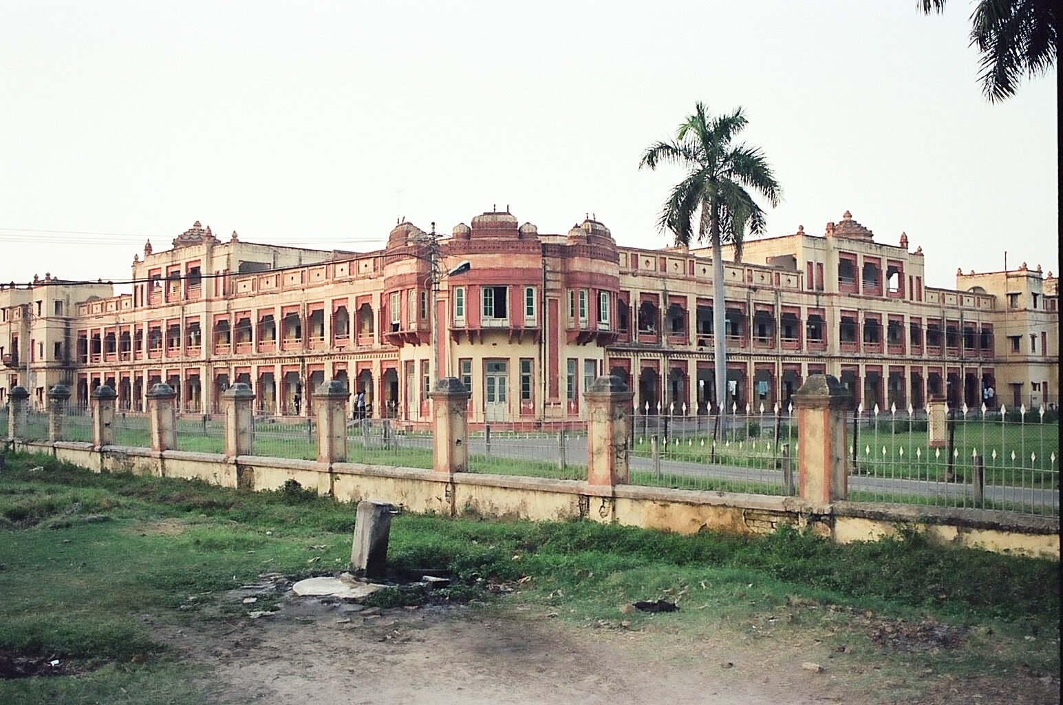 identify the best career option banaras hindu university