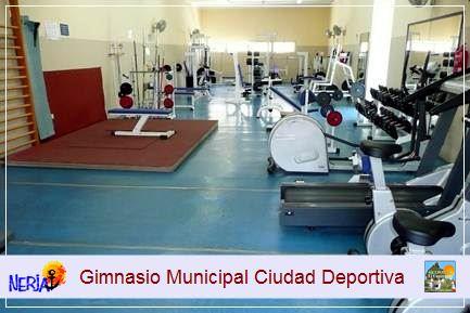 Podrá difrutar de gimnasio de la Ciudad Deportiva, previo pago de los precios públicos establecidos