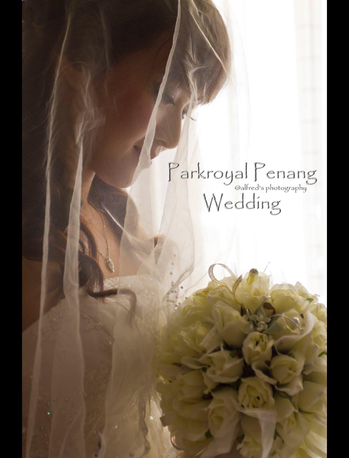 Ariel wedding dress penang