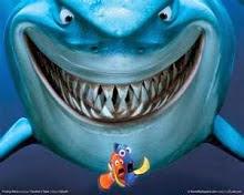 tubarão a fim de comer os peixinhos