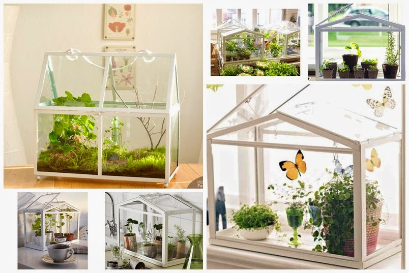 Gewächshaus Wohnung moving inspiration ikea green house socker vavita