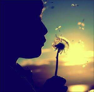 Make a wish come true . . .