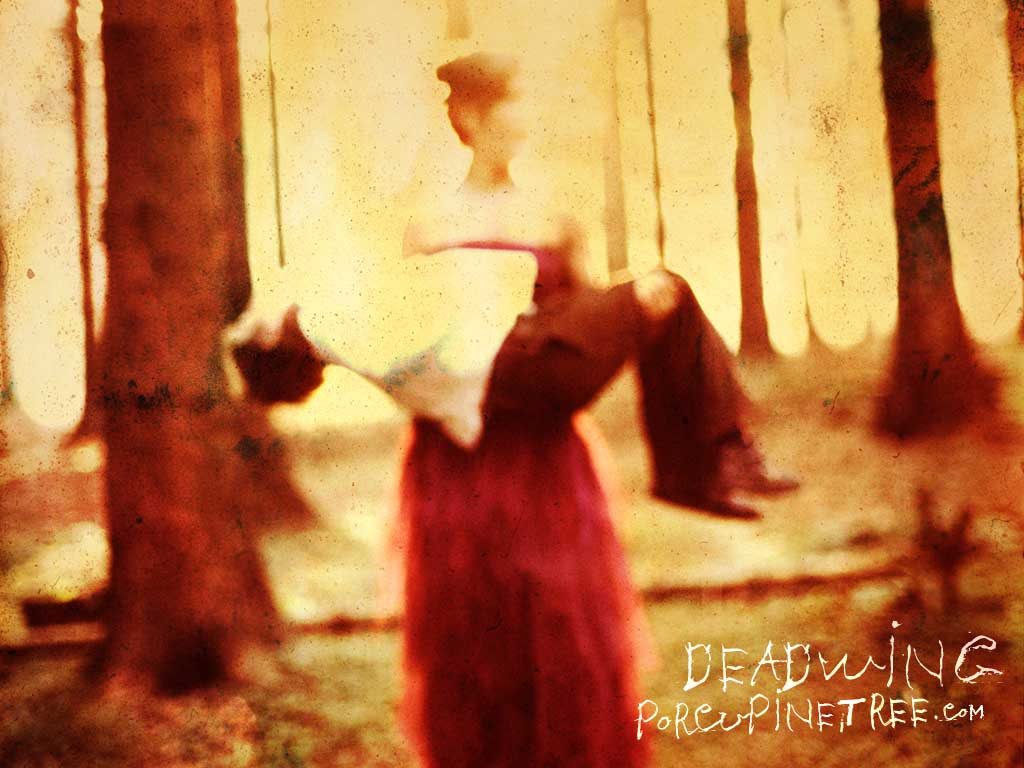 Deadwing Album cover art mother holding child in woods by band Porcupine Tree