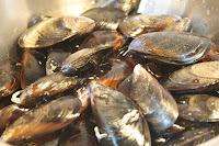 μύδια, mussels