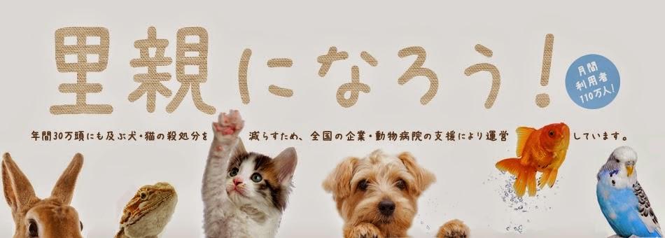 Ajude a Salvar Vidas no Japão!!!