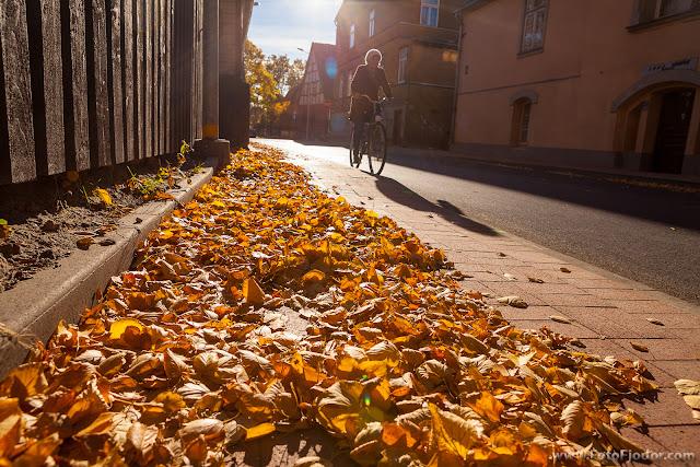 Золотая осень в Лиепае 2015