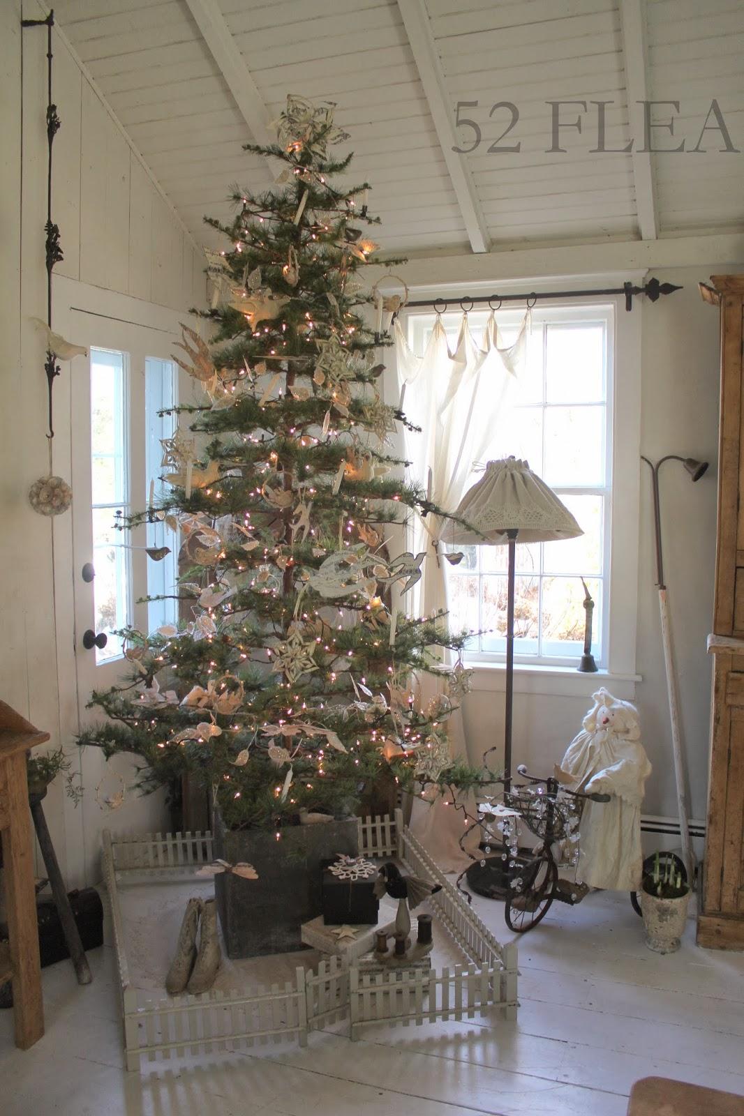 Christmas Trees Best