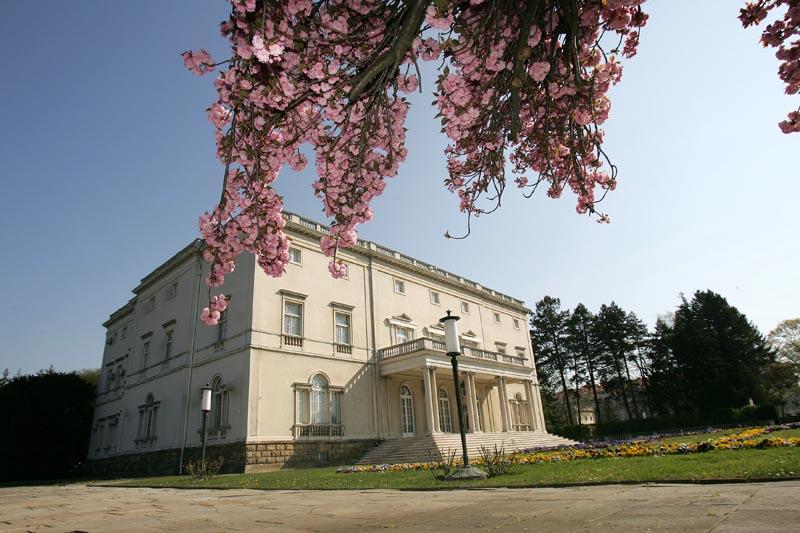 Белый дворец