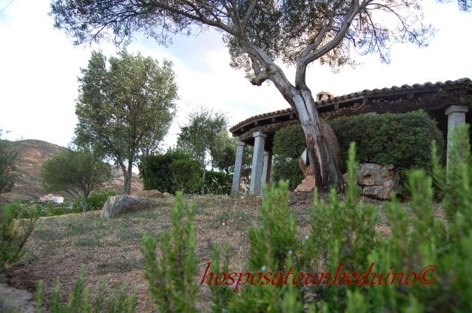 Ho sposato un beduino la casa tra gli oleandri il luogo - Gradoni giardino ...