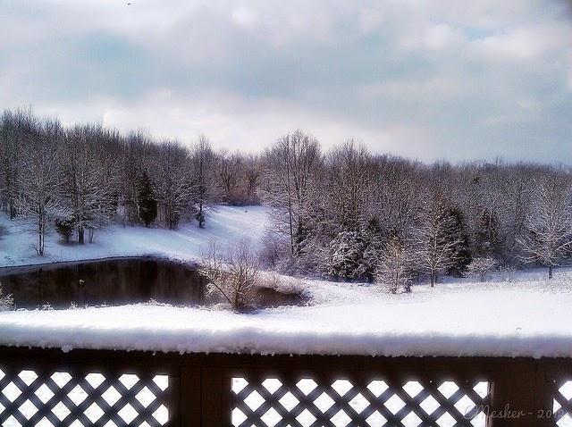 Hot Tubbin' & Snow - 9/52