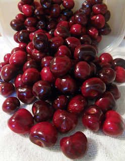 Perfect Cherry-Picked Cherries for Canning