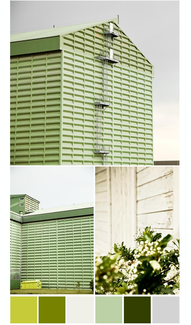 nuancier couleur silo à grain fleur de pyracantha