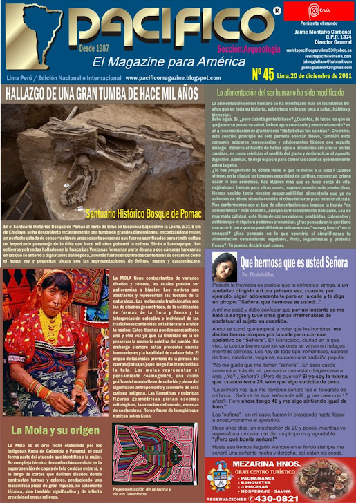 Revista Pacífico Nº 45 Arqueología