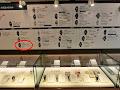 Casio exposición historia relojes