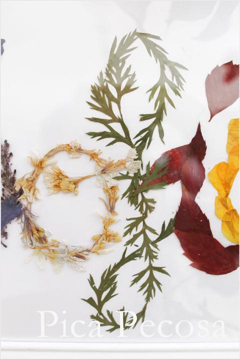 cuadro-con-nombre-hecho-flores-secas-prensadas-diy-11