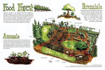 M5s La Food Forest Pi 249 Vecchia D Italia