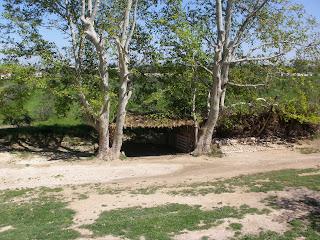 Cochera huerto sostenible ecológica