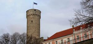Добровольная эстонская утопия или покорность американской метрополии-оккупанту?