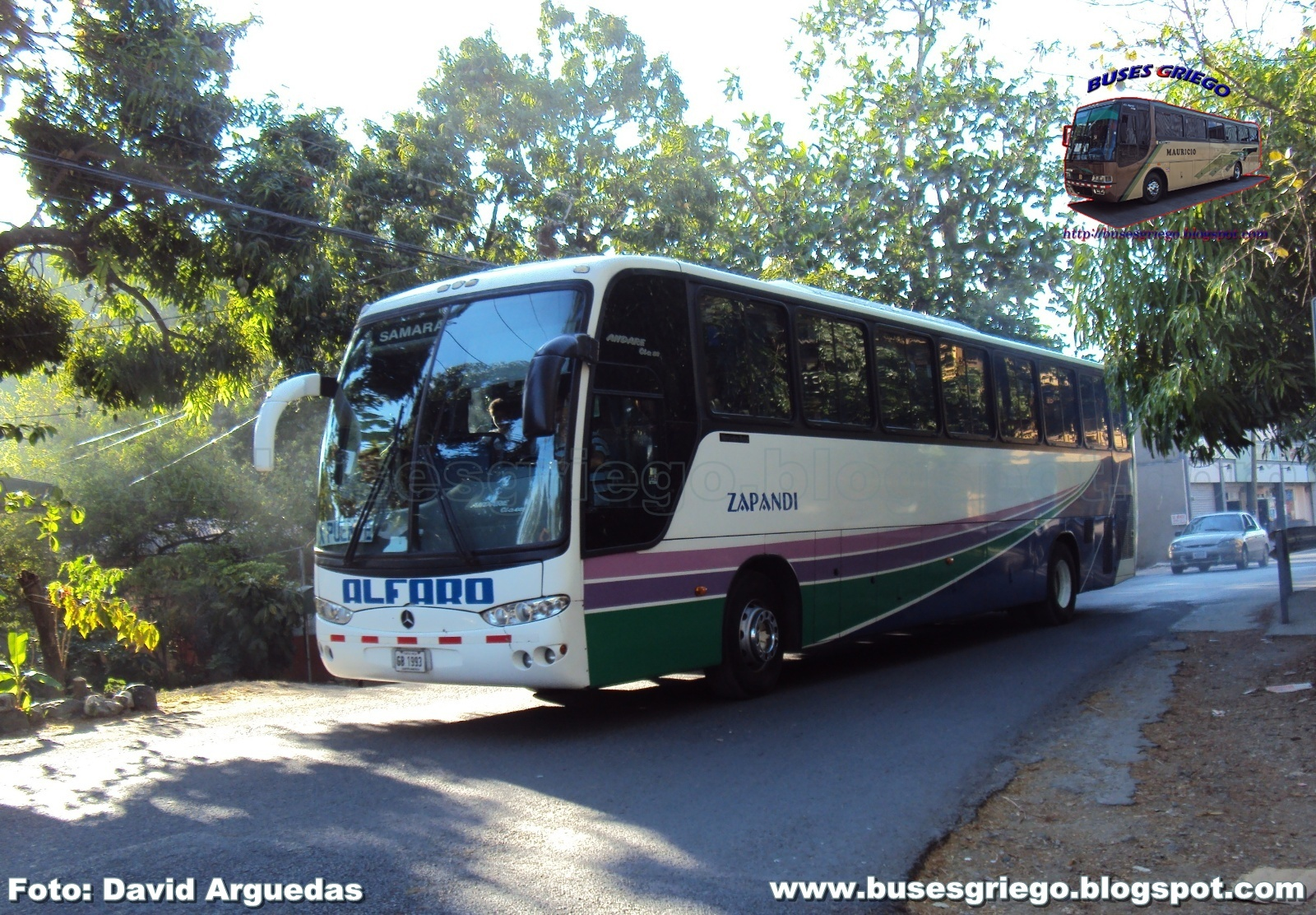 Buses griego galeria 39 12 04 11 for Mercedes benz san jose