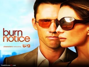 Burn Notice 1ª, 2ª, 3ª, 4ª, 5ª e 6ª Temporada – RMVB Legendado