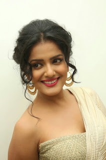 Vishakha Singh at rowdy fellow audio 043.jpg