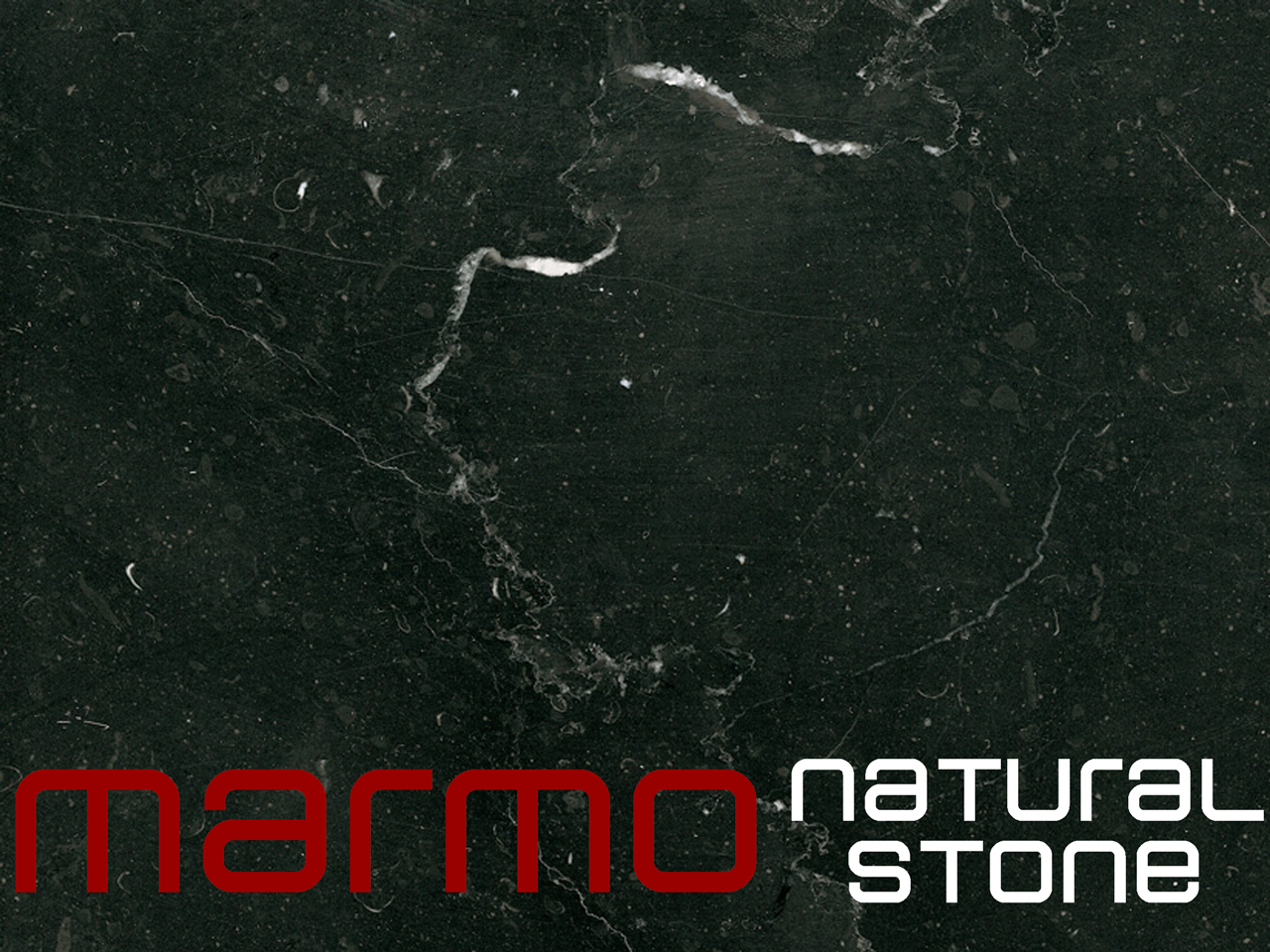 Spanish Marble Black Marquina - MARMO