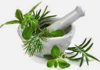 obat herbal untuk penyakit gonore