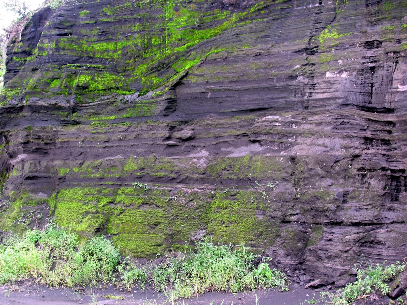 Amanzalva los suelos de origen volc nico tienen for Significado de suelo