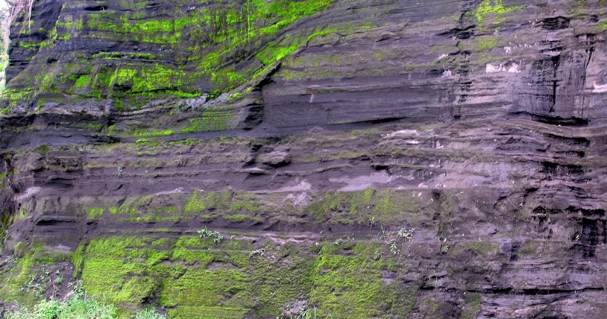amanzalva los suelos de origen volc nico tienen