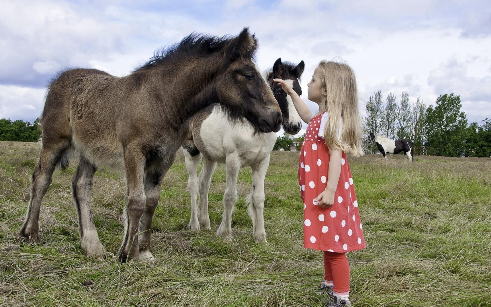 http://2.bp.blogspot.com/-VDymwrX_2NA/UVz-SJ-fJGI/AAAAAAAAZG0/xWEHYyln5cQ/s1600/a-horses-on-the-meadow.jpg